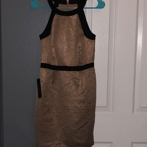 The Limited Size 0 Cocktail Dress